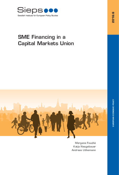 SME Financing in a Capital Markets Union (2016:6)
